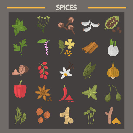Different spices color flat icons set for web and mobile design Vettoriali