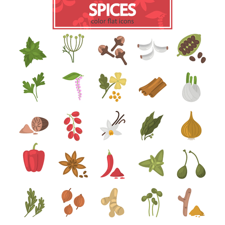 Different spices color flat icons set for web and mobile design Ilustração