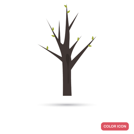 Spring tree with first leaves color flat icon for web and mobile design 일러스트