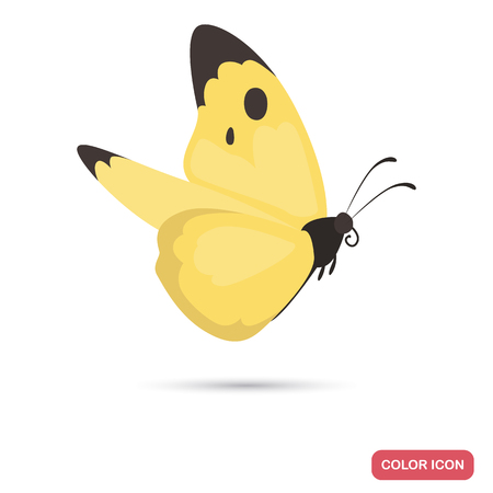 Spring butterfly color flat icon for web and mobile design