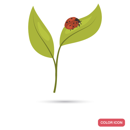 LOadybug on a sprout color flat icon for web and mobile design Vettoriali