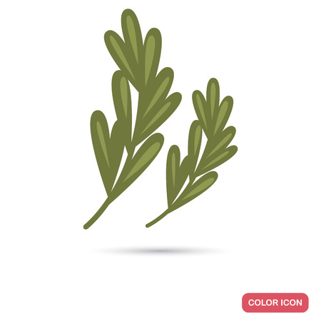 Rosemary twigs color flat icon for web and mobile design Ilustração
