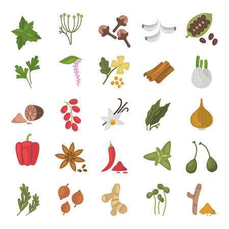 Different spices color flat icons set for web and mobile design  イラスト・ベクター素材