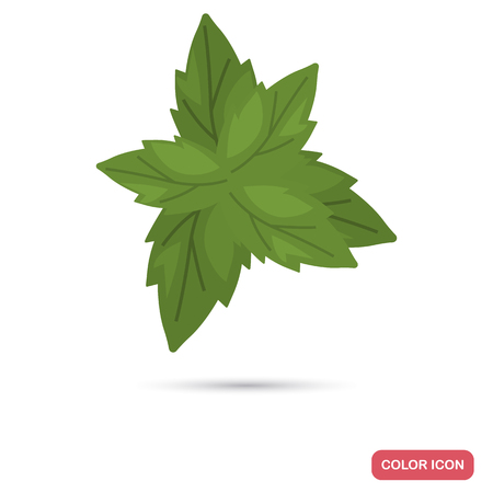 basil leaves color flat icon for web and mobile design Ilustração