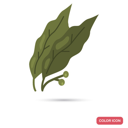 Bay leaves color flat icon for web and mobile design