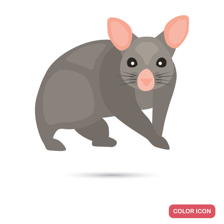 Brashtail possum color flat icon for web and mobile design