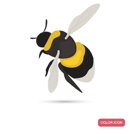 Bumblebee color flat icon for web and mobile design Illustration