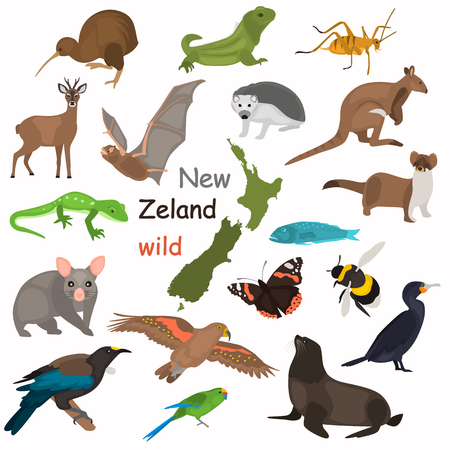 New Zeland wild animals color flat icons set for web and mobile design Çizim