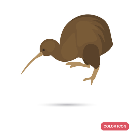Kiwi bird color flat icon for web and mobile design