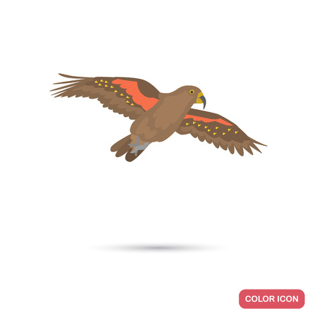 Parrot kea color flat icon for web and mobile design