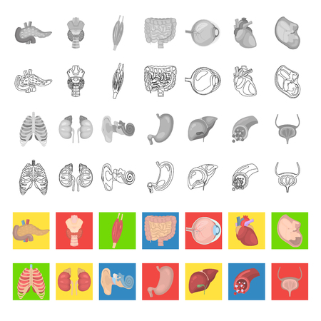 Human anatomy color flat, line and monochrome icons set