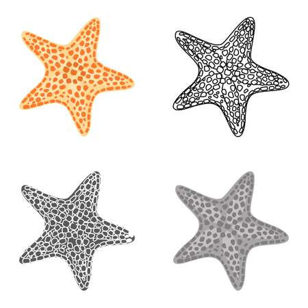 Sea star color flat, line, simple and monochrome icons set. Vector concept Ilustracje wektorowe