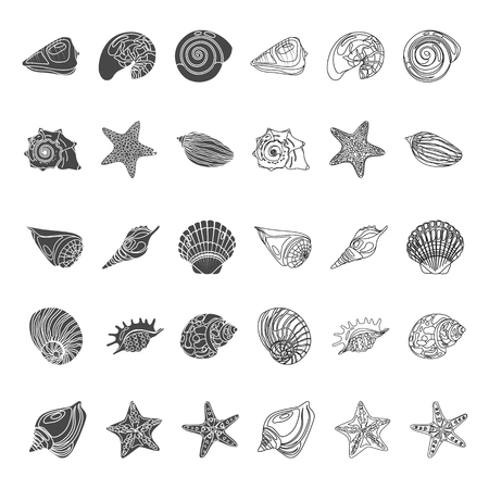 Shells and sea stars simple and line icons set. Vector concept