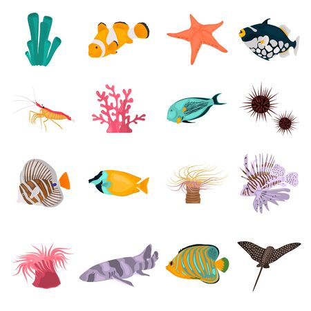 Animal coral reefs color flat icons set for web and mobile design Standard-Bild - 128781254