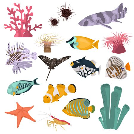 Animal coral reefs color flat icons set for web and mobile design Standard-Bild - 128781256