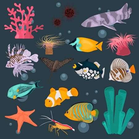 Animal coral reefs color flat icons set for web and mobile design Imagens - 128781251
