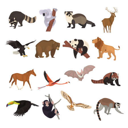 Around the world animals collectiom color flat icons set Ilustracja