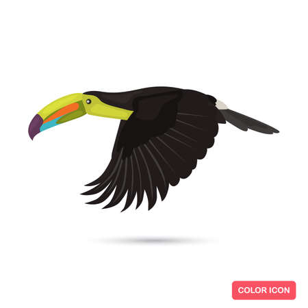 Flying toucan bird color flat icon