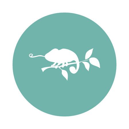 chameleon: Chameleon icon Stock Photo