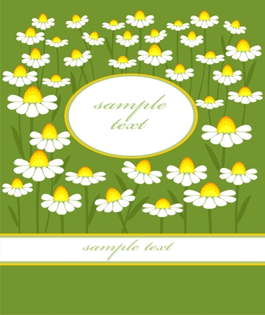chamomile Stock Vector - 8289543