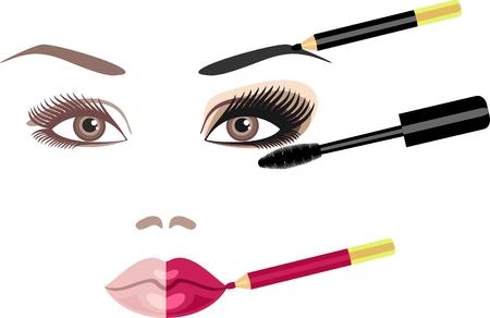 makeup brush: makeup Illustration