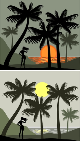 landscape with sunset on a palm beach Vector