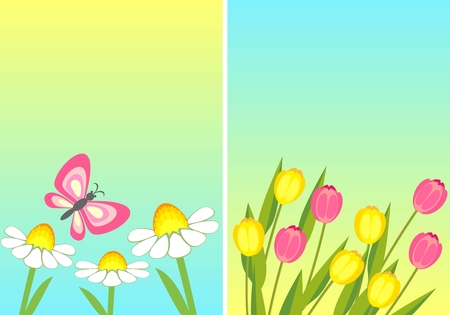 chamomile and tulip Stock Vector - 9090533