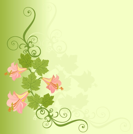 postcard with flower Vector