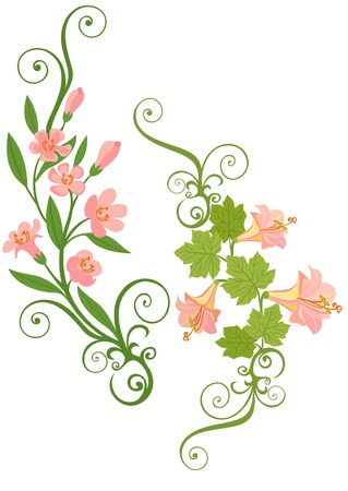 bordures fleurs: fleur rose