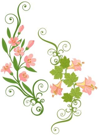 pink border: pink flower