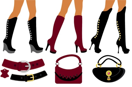 Womens footwear and handbag  Vector