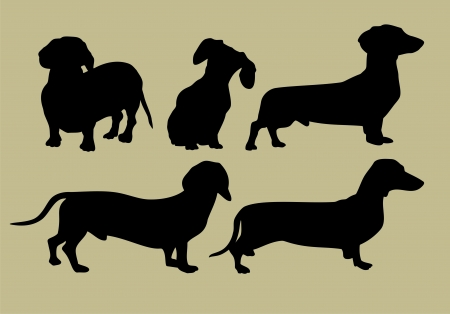 silhouette of dachshund Vector