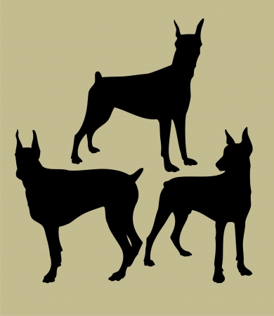 silhouette of doberman Vector