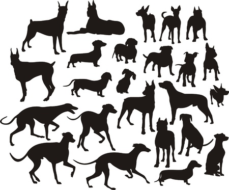 silhouette of the dogs Иллюстрация