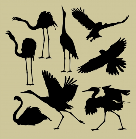 flying geese: silhouette of birds