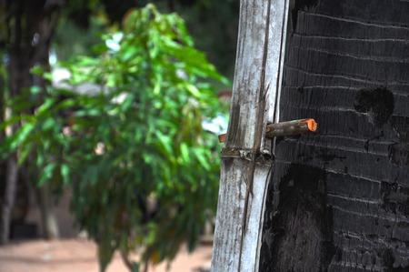 suger: Ladder Suger Palm -Sem Reap,Combodia