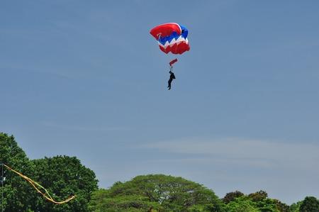 parachutists: parachutist