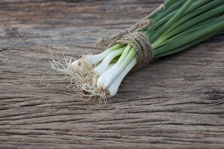 bulb and stem vegetables: bunch of spring onions on wood