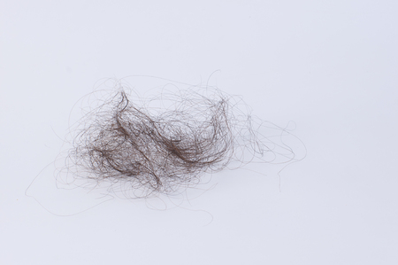hair tuft: women with hair problem holding loss hair in hand,on white background