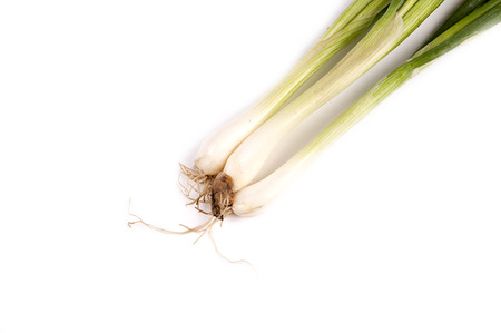bulb and stem vegetables: bunch of spring onions on white background