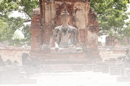 cabeza de buda: Sukotai cabeza de Buda en el árbol, Ayutthaya Foto de archivo