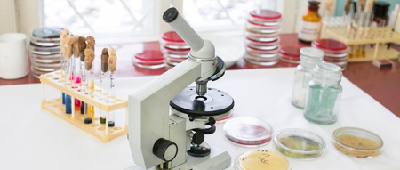 Microscope, Petri dishes and test tubes on a table in a medical laboratory
