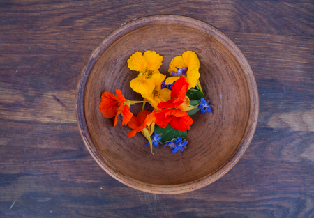 edible leaves: Colorful edible flowers in clay bowl on wooden background. Bright nasturtium flowers with leaves and borage. Healthy organic food. Stock Photo