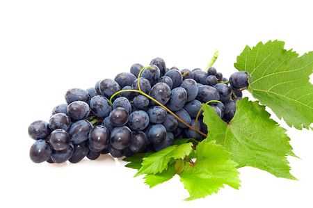 Bunch of grape isolated on  a white background. Stock Photo