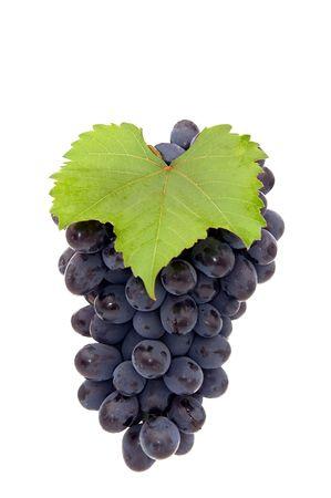 Bande de raisin isol� sur un fond blanc. Banque d'images