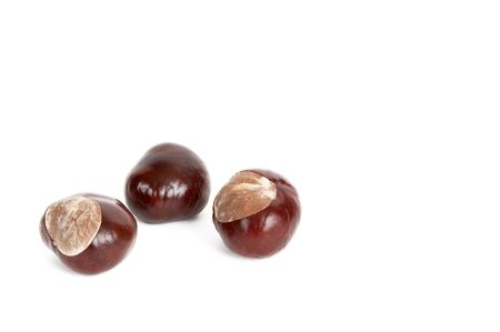 fale: Three chestnuts isolated on a white background. Stock Photo