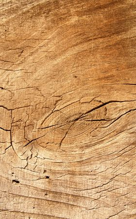 woodsy: Brown dry board as abstract background.
