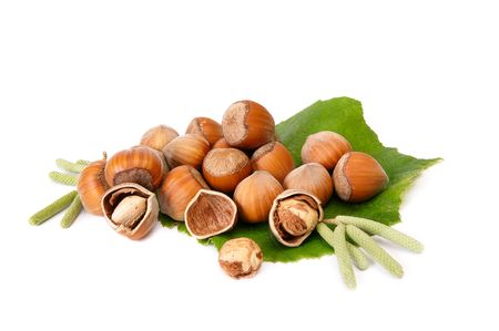 Small heap of hazelnuts isolated on a white background. photo