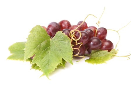 grapevine: Small,ripe cluster of grape  isolated on a white background. Stock Photo