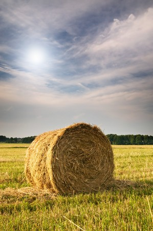 Beautiful stubble field with hay bales by summer. Stock Photo - 7351383